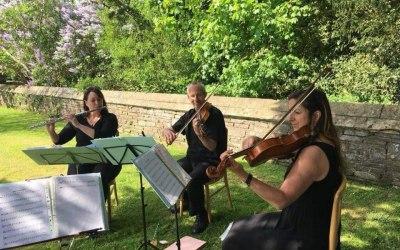 The Bay Quartet 5