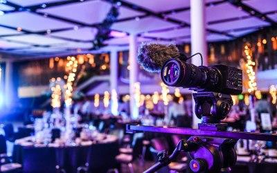 Purple Elephant Media 1