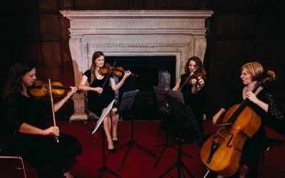 Akina String Quartet 3