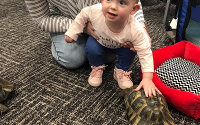 Toddler group with Porsche the Tortoise