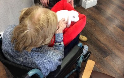 In Herald Lodge Care Home, with Lilly the look eared rabbit