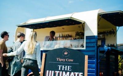 Tipsy Cow Ice Cream 1