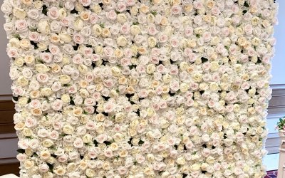Our Premium White Rose Wall, perfect for Baby showers, Weddings, Birthdays, Christenings, Hen Dos and more