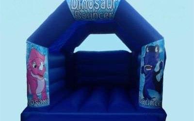 DinoTots Bouncy Castle & Soft Play hire  7