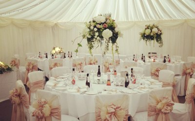 Chair Covers/ Sashes