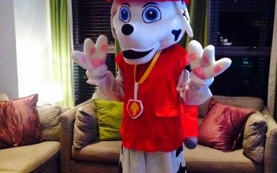 Brilliant Mascots - High Quality