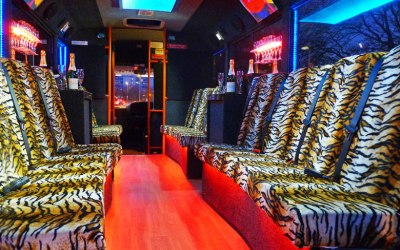 the interior of the tiger print party bus