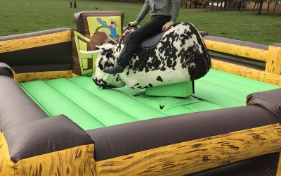 Rodeo Bull and Simulator hire:  https://www.splashinflatables.com/category/rodeo-and-simulators#BodyContent