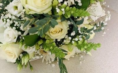 Becks Flowers 3