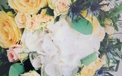 Becks Flowers 2