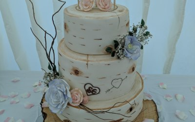 Cakes and Catering 1