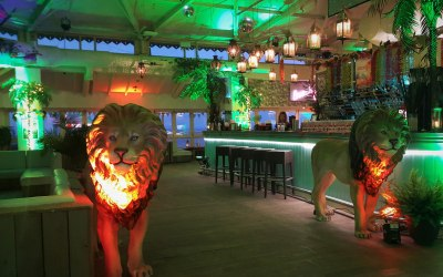 Planet gold decor wild animal decor Aruba Bournmouth