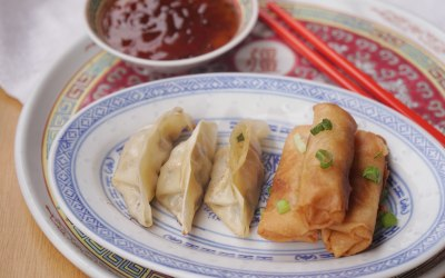 pan fried dumplings and spring rolls