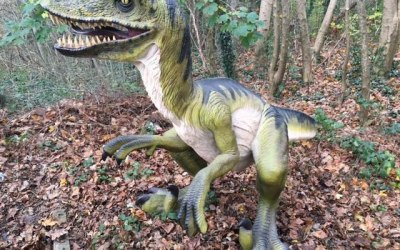 Life size dinosaur for hire