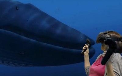 Deep sea experience