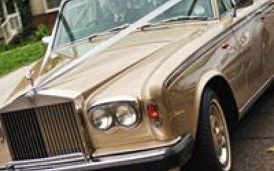 Gold Choice Wedding Cars Ltd 4