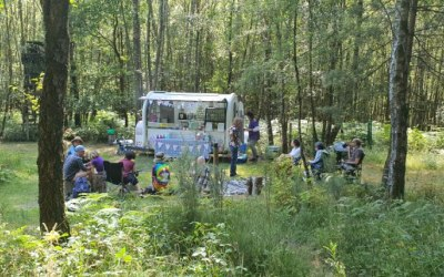 Festival in the woods