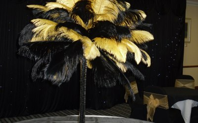 ostrich feather centrepieces can be in any colours with light up bases