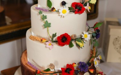 Iced Images Cakes 8