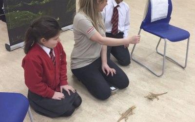 School wildlife experiences