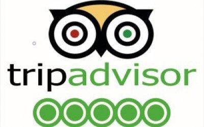 Trip advisor - 5 star rated