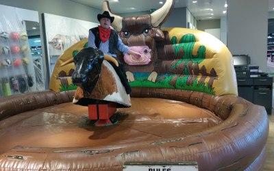 Rodeo Bull/Bucking Bronco
