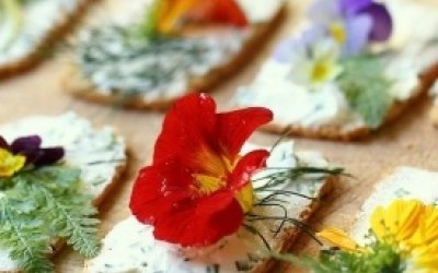 Fancy canapés with edible flowers
