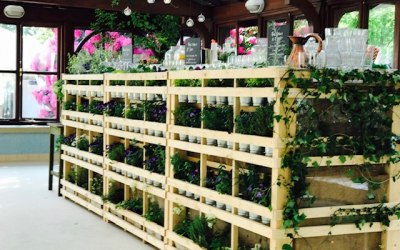 Our stunning botanical bar, pick your own garnish for your G&T!