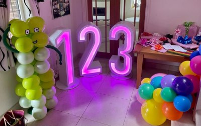 LED light up numbers