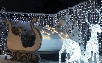 Christmas Garden Winter Wonderland