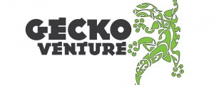 Gecko Venture Activities
