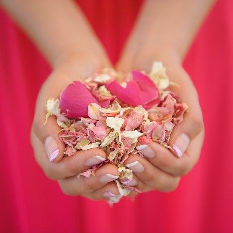 Confetti from Shropshire Petals