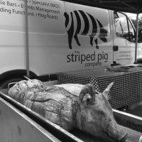 The Striped Pig Hog Roast