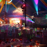 A 'Circus' Themed Party