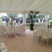 Collingwood Marquees Ltd