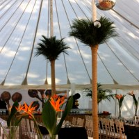 Traditional Marquee un-lined Lewis Marquees
