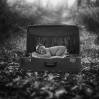 newborn photography bloxwich