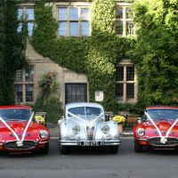 Classic Jaguars for the bride and groom in Warwickshire