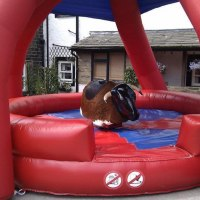 Party Maniacs Rodeo Bull